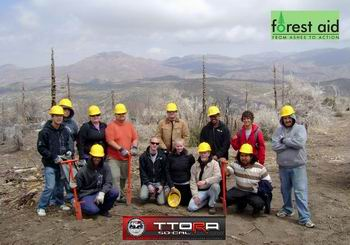 Forest Aid Group pic